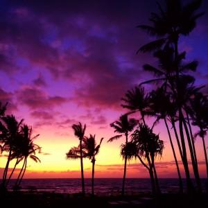 Spazmatics Maui